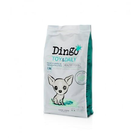 Dingo Toy & Daily