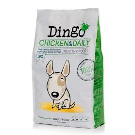 DINGO CHICKEN & DAILY