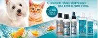 Cuidado dental para perros | Neonatural