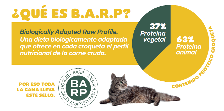 BARP.png